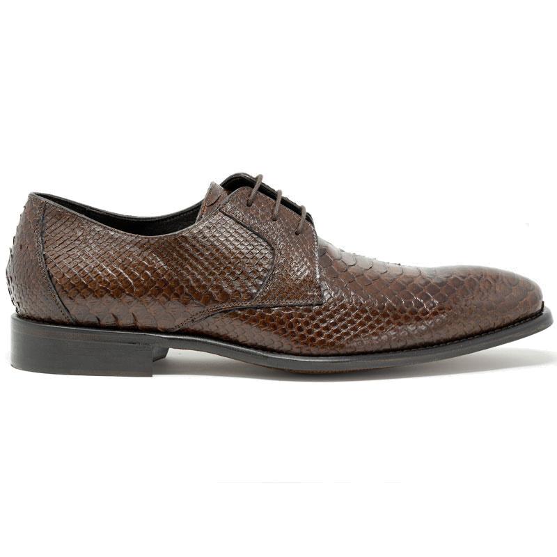 Calzoleria Toscana Z624 Python Shoes Brown Image