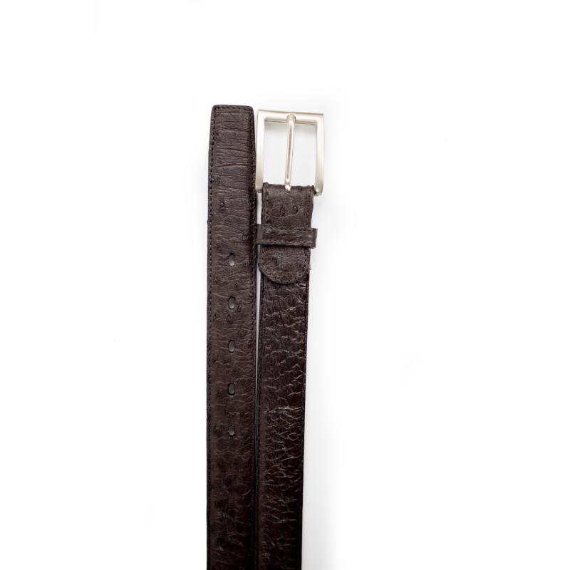 Belvedere Ostrich Quill Belt Dark Brown Image