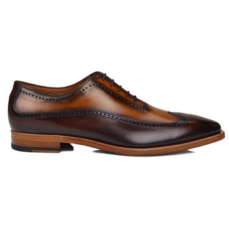 Bruno Magli Calvino Wingtip Oxfords Brown / Cognac Image