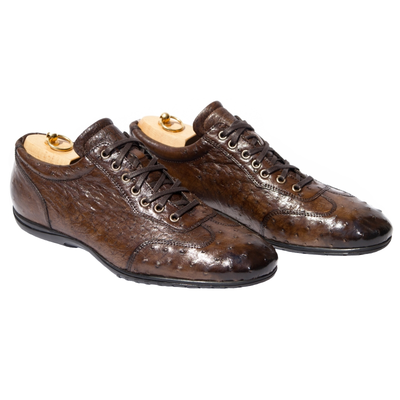 Calzoleria Toscana 7405 Ostrich Quill Sneakers Brown Image