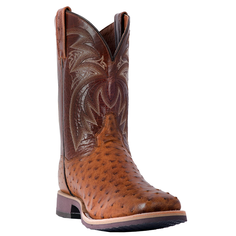 Dan Post DP3985 Philsgood Full Quill Ostrich Boots Brown Image