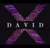 david x lizard shoes category logo_logo