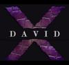 David XLogo