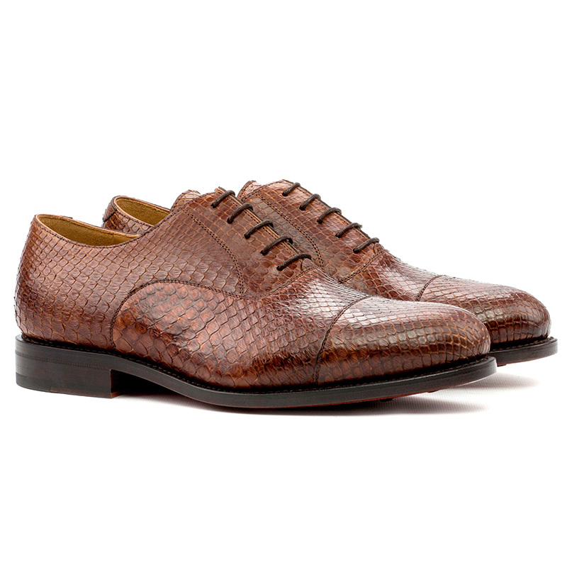 Emanuele Sempre Oxford Python Shoes Med Brown Image