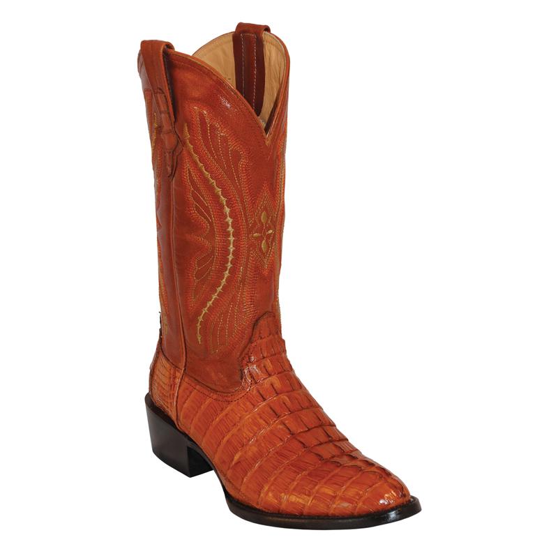 Ferrini Caiman Tail 10311-02 Exotic Boots Cognac Image