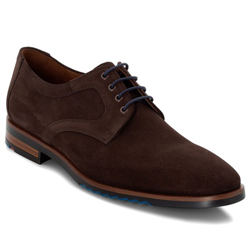 Lloyd Delft Suede Brown Shoes Image