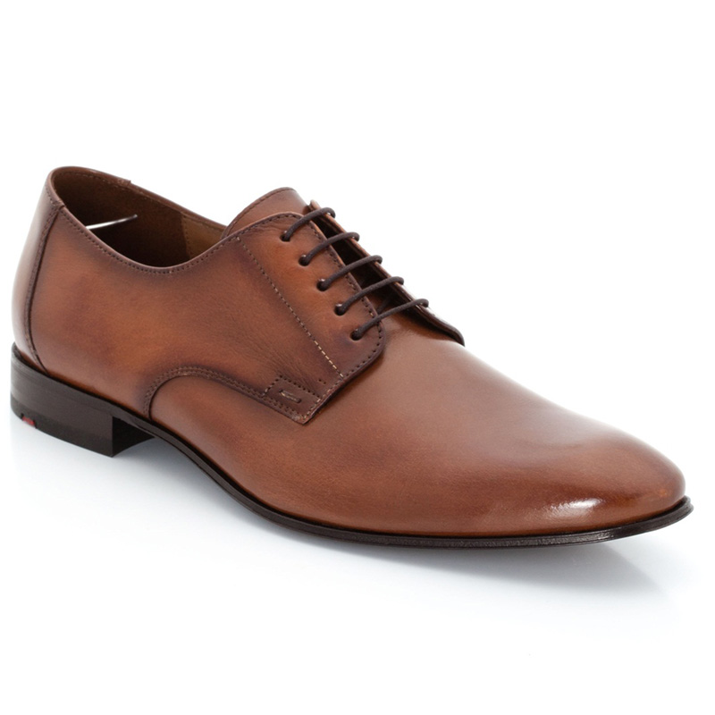 Lloyd Laurin Brown Shoes Image
