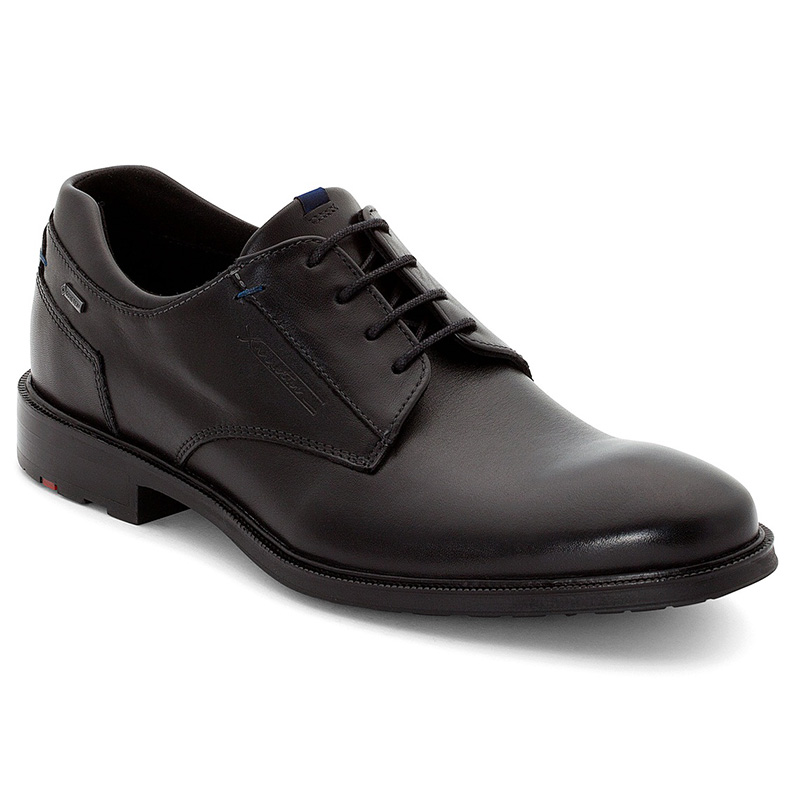 Lloyd Veria Black Shoes Image