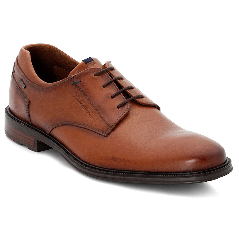 Lloyd Veria Brown Shoes Image