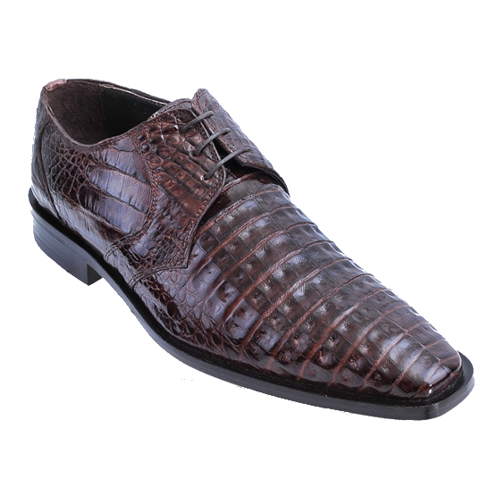 Los Altos Caiman Belly Derby Shoes Brown Image
