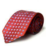 Daniel Dolce Handmade Italian Silk Tie DDT612 Image