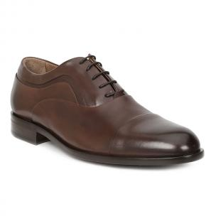 Bruno Magli Sassiolo Oxford Shoes Dark Brown Image