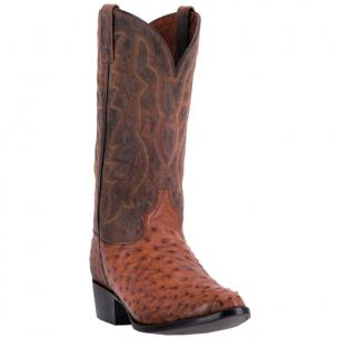 Dan Post Tempe DP3323 Ostrich Boots Cognac / Brown Image