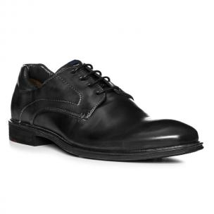 Lloyd Milan Lace Up Shoes Black Image