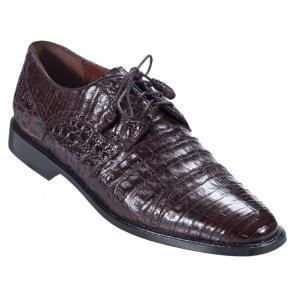 Los Altos Caiman Belly Cap Toe Shoes Brown Image
